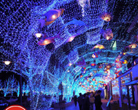 Wholesale Full Size Color LED Bulbs Waterproof Curtain Lights Christmas Fairy wedding Icicle lights strip