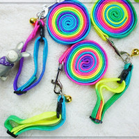 Wholesale Hot Sale Fashion Pet Harness Rope Rainbow Colors Dog Collar and Dog Collar Leash Pet Supplies