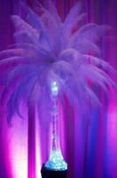 Wholesale cm Ostrich Feather pieces wedding decoration
