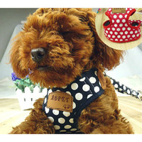 Wholesale Hot Sale Fashion Pet Supplies Small Size Spotted Chest Strap and Leash Harness Rope High Quality