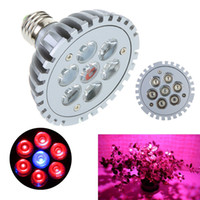 Wholesale 90 V E27 W blue amp red LED Plant Lamp Hydroponic LED Grow Light Bulbs for Flowering Plant and hydroponics Garden