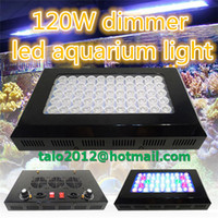 Wholesale 120W x3w coral reef dim led aquarium light degree len two dimmable konbs manufactor selling