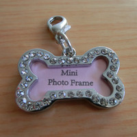 Wholesale Fashion Mini Photo Frame Design Diamond Bone Shaped Silver Dog Pet ID Tags Size x2cm Designer Pet Personalized Products A059