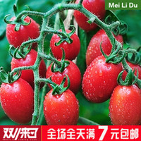 Wholesale Wreath balcony vegetable seeds bonsai four seasons fruits and vegetables seeds red cherry tomatoes seeds
