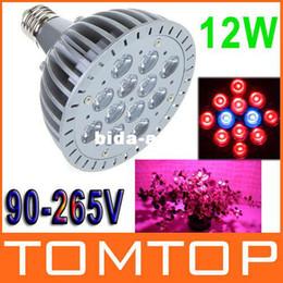 Promotion led grow bleu ampoule E27 ampoule LED Grow lampe 12W rouge bleu plante lampe hydroponique Grow ampoules LED pour l'expédition à effet de serre de jardin gratuit