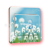 Wholesale Creative Home Gift Stickers DIY fashion wall stickers switch stickers dandelion