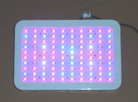 Wholesale Worldwide plant w Led grow light bands w for hydroponics lighting growing and flower led grow light manufacturer