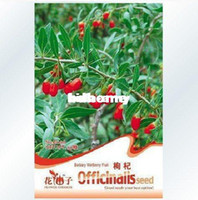 Wholesale bag goji berry lycium barbarum seeds for DIY home gargen