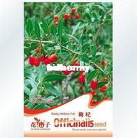 Wholesale bag goji berry lycium barbarum seeds for DIY home gargen