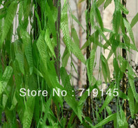 New Year artificial twigs - 200pcs artificial willow twig leaves vine wicker vine Willow leaf vine plants home garden supermarket decoration