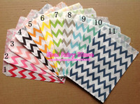 Wholesale Chevron Paper Gift or Favor Bags Party Food Paper Bag x18cm colors