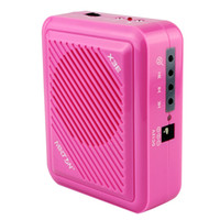 Wholesale New PINK FM MP3 Large capacity Hi Fi Audio Effects High sensitivity Environmental Friendly X3E Tour Guide Microphone J6000E