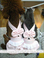 Wholesale nice name brand dog dress dog skirt puppy dress pets clothes dog clothes dog wear