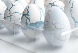 Wholesale dinosaur egg cracks grow eggs educational toys 60pcs lot free shipping