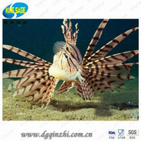 Wholesale Simulation Fish Simulation lionfish Aquarium Fish Tank Landscape Ornament Decorative Silicone lionfish