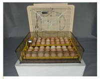 Wholesale Newest Automatic Digital Small Egg Incubator
