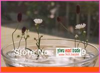 Cheap Bamboo & Wooden flower glass vase Best Floating Vase Glass & Crystal flower shaped glass vase