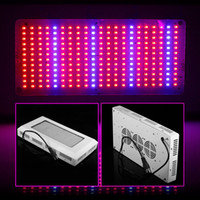 Wholesale DHL Free W SMD Red Blue LED Grow Light Hydroponics Garden Light Year Warranty ZW0050