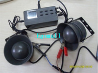 Wholesale Hot Bird Decoy mp3 Player with Timer Bird caller of Desert Machine Hunting Decoy D Display Screen USB Transfer Rate CP390 H380
