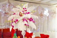 Wholesale a inch White Ostrich Feather Ostrich Plume Wedding Decoration Ostrich Centerpieces