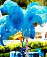 Wholesale inch Turquoise Ostrich Feather Plumes wedding centerpieces party decoration jewelry making