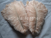 Wholesale quot cm Ivory Color Ostrich Feathers plumes Wedding Decor centerpiece home table Decor