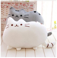 Wholesale Pusheen Cat big pillow cushion biscuits cat plush toy doll birthday gift pillows decorate sofa home decor