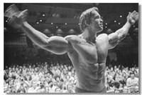 Cheap Arnold Schwarzenegger Silk Wall Poster Mr Olympia Bodybuilding 101Silk Canvas Poster hot Painting Room Decorate