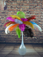 Wholesale EMS inch Ostrich Feather Plume White Lime Green Turquoise Purple Red Ivory Black for wedding centerpiece