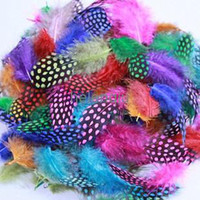 Wholesale 500Pcs CM Guinea Fowl Spotted Feathers Mixed Color Craft Feather FREESHIPPING