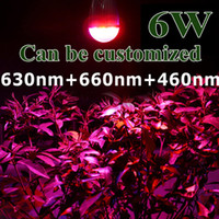 Wholesale 10Pcs W LED Grow Bulb Light Red and Blue E27 V LED plant Lighting Lamp Hydroponic Globe Bulbs for Indoor Greenhouse