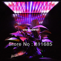 Wholesale New Design W Led Lamp Red Blue Orange White Garden Light LED Plant Lamp Hydroponics LED Grow Light Bulbs