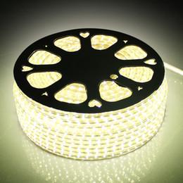 110V 220V AC SMD3528 LED Strip Light with a EU US Power plug 60lights m,IP67 Waterproof LED Strip