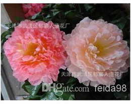 Wholesale - Artificial flowers peony flowers silk flower dance props 20CM big peony Free shipping