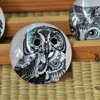 Wholesale Dia cm Black Owl Painting Round Glass Paperweight Cute Fridge Magnet Crystal Art Craft FM077