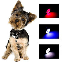 Wholesale S5Q Flashing Grow Led Light Hi Visibility Dog Cat Safety Collar Tag Pets Toys AAAAHO