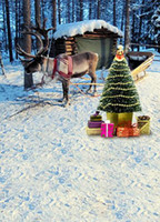 Wholesale 200CM CM backgrounds Christmas gift antelope pull carts photography backdrops photo LK1355