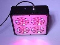 Wholesale 180w apollo led grow light led spectrum hydroponic plant grow light customized optioanl2 years warranty Black Case