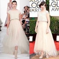 2014 Golden Global Award Celebrity Dresses Red Carpet Evenin...