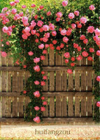 Wholesale Hot Sale Seeds climbing rose seeds plants Spend climbing roses Seed Potted flower Home Plant Garden Rose Seeds