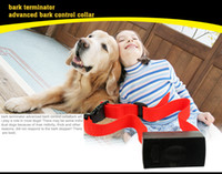 Wholesale Retail Brand NEW and Water resistant Electronic Anti Bark Dog Training Shock Collar