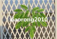 Wholesale NEW cm quot Length Artificial Simulation Silk Plants Geely Leaves Green Leaf Five Stems per Bush Home Decoration Wedding Flower