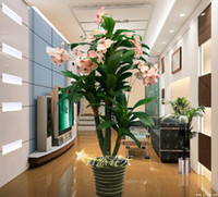 Disposable Other Household Sundries,Single Sprig/Bo 1 ALIEXPRESS FREE SHIPPING Large plant bonsai plastic artificial flower fake tree floor decoration bonsai double phalaenopsis