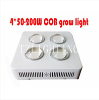 Wholesale COB Grow W LED Grow Light Plant Led Grow Light x Plant Hydroponic Lamp Plant Grow Light