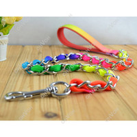 Wholesale S5Q Rainbow Metal Leash Lead Rope For Pet Puppy Dogs Outdoor Walking Tracking AAACXL
