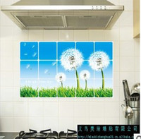 Wholesale Dandelion kitchen oil proof stickers The beautiful painting the wall Wall Stickers QZ191