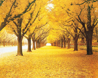 Oil Painting arts avenue - HD Canvas Print Landscape home decor wall art painting Picture Of gold Avenue x32inch