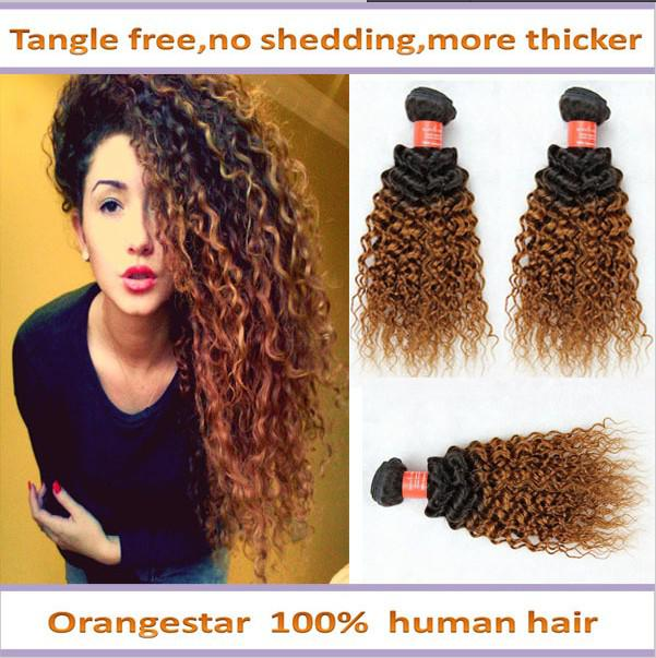 Ombre Brazilian Hair Extensions Ombre Curly Hair Weave Two