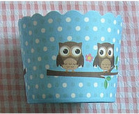 Wholesale cupcake liners cute owl muffin cases baking window cake boxes