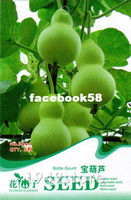 Wholesale 1Bag Gourd Seed Vegetable Bottle shaped Pure Nature Organic Green Food